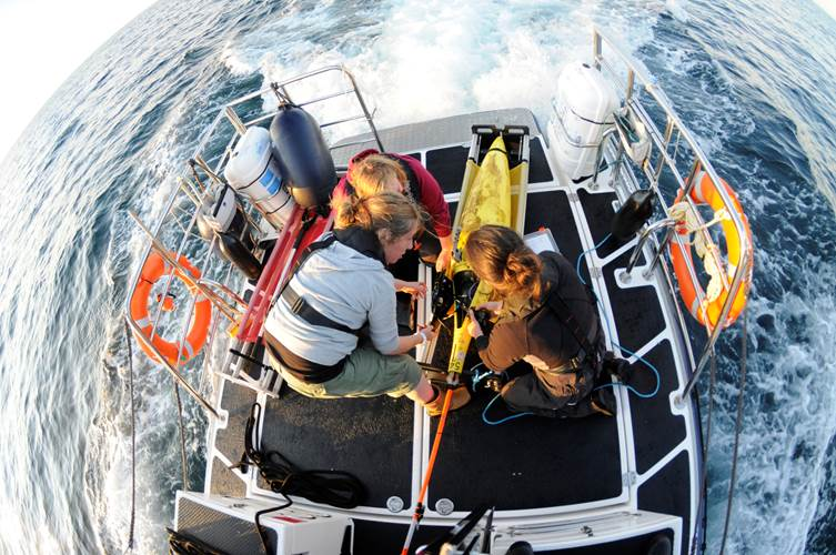 Gliders have become a regularly used platform for ocean monitoring. Photo from SAMS.